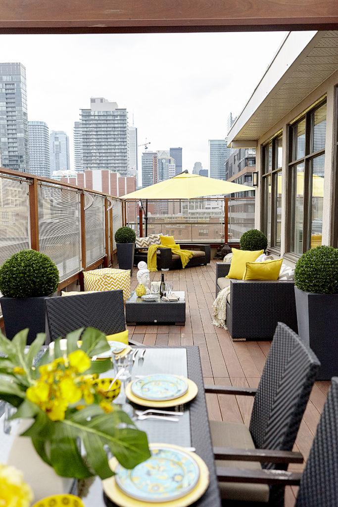 Terra Firma Design_Penthouse Terrace_04