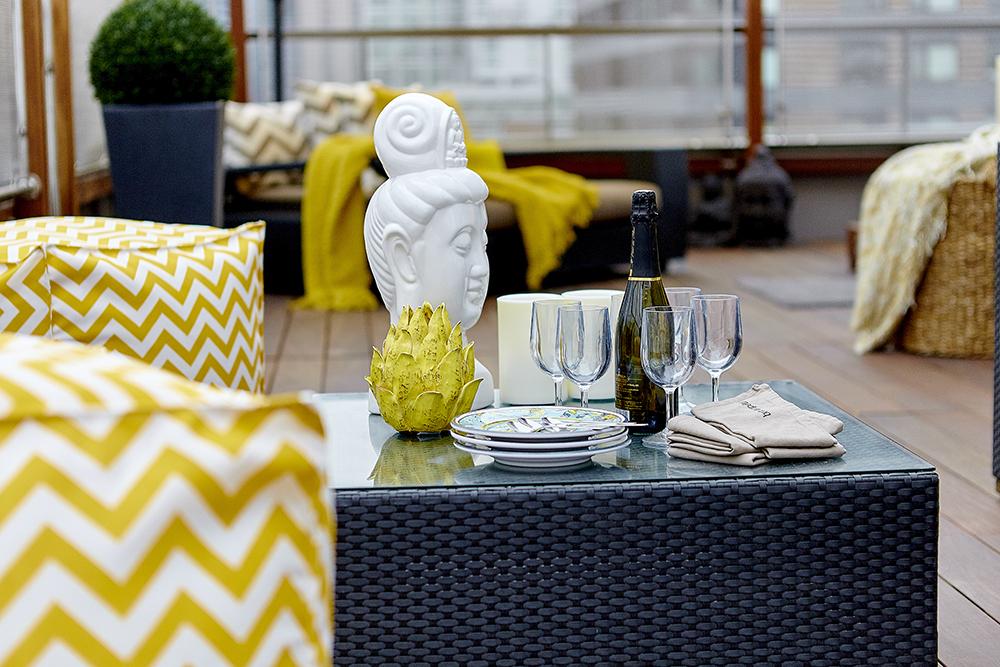 Terra Firma Design_Penthouse Terrace_05