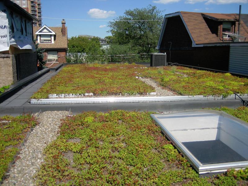 Eco-Roof Incentive Program